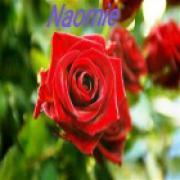 Consultatie met waarzegster Naomie uit Nederland